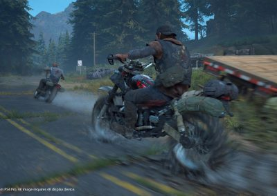 daysgone-screenshot02