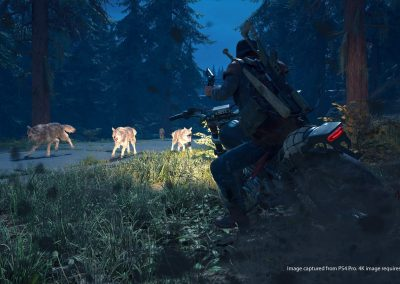 daysgone-screenshot09