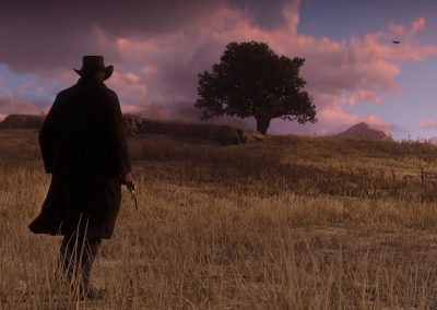 reddeadredemption2-screenshot30
