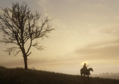reddeadredemption2-screenshot73